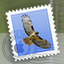 Apple Mail App